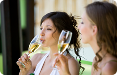 Vinyard & Winery Directory
